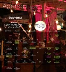 agenda marzo 2014a2